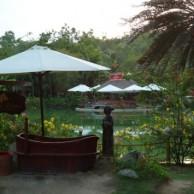 Лечебные грязи и грязевые минеральные комплексы в Нячанге